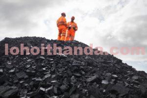 Than đá trong công nghiệp khai khoáng và khí đốt 2019